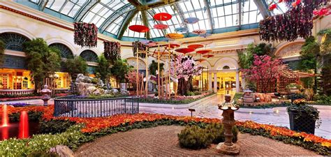 the bellagio celebrates with a japanese inspired garden