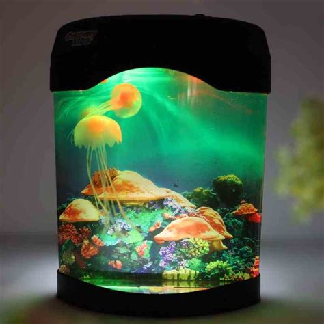 Small Aquarium Pets At Home Compare Prices On Small Aquarium Pets Shopping Buy