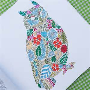 colouring books for adults animal kingdom animal kingdom by millie marotta colouring book