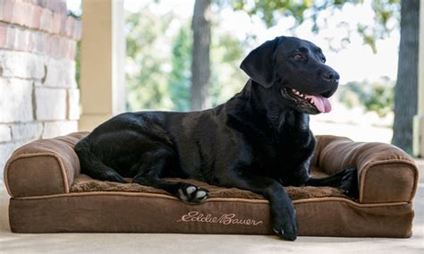eddie bauer dog bed eddie bauer large couch dog bed groupon goods
