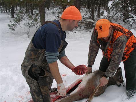 how to gut a buck file field dressing a deer 2 jpg