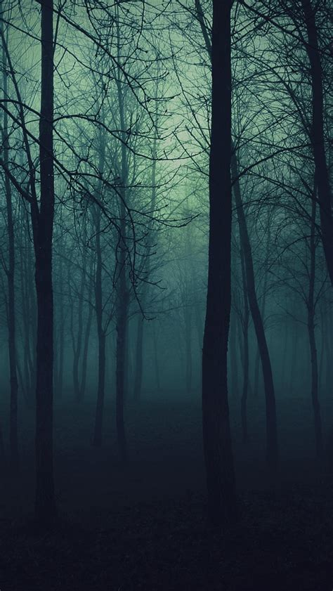 dark forest iphone wallpaper wallpapersafari