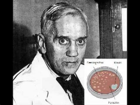 alexander fleming invention of penicillin biography com alexander fleming and the discovery of penicillin youtube