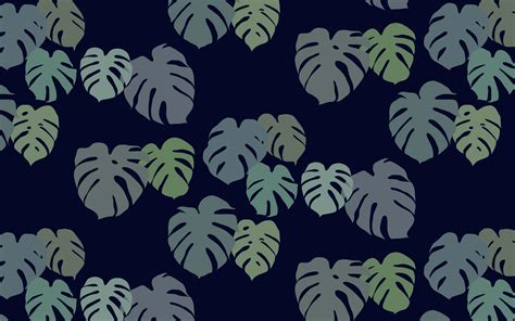 Design Love Fest No Ocean | noocean monstera 2 jpg 1856 215 1161 desktop wallpaper