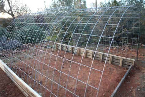 building  cattle panel pallet greenhouse peak prosperity