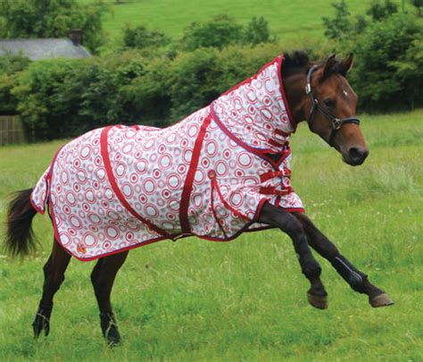 rugs for horses for sale cuddly pony rugs rugs sale