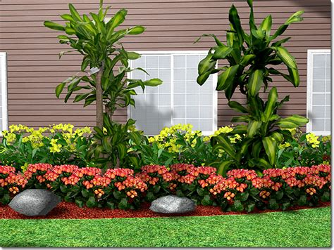 landscaping plants types styles ideas etc thats my old house