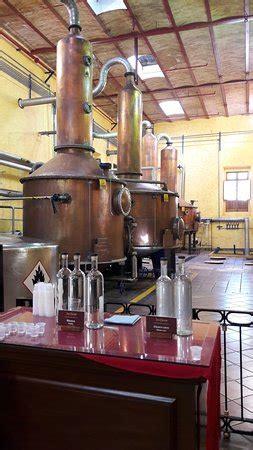 tequila distillery tour tequila distillery tour guadalajara lo que se debe saber antes de viajar tripadvisor