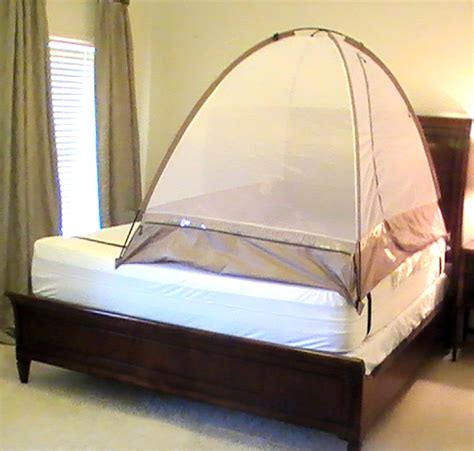 bed bug net what you shouldn t do with bed bugs pestmall blog