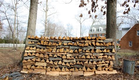 best firewood for fireplace the best and worst trees for firewood hobby farms