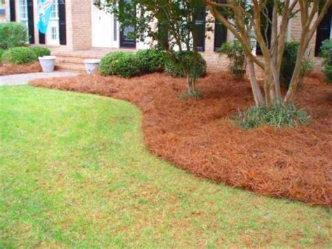best mulch for flower beds dothan lawn care l l c commerical lawn care sprinkler repair sod services 334 618 1916
