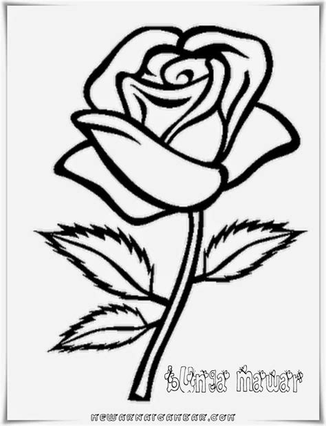 Gambar Bunga Ros Untuk Diwarnai - Gambar 06