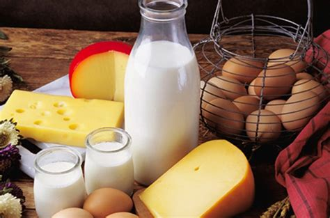 healthy fats non dairy four high energy foods for rediff getahead