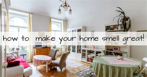 how to make house not smell like dog how to make house not smell like 28 images how to make your home smell like with