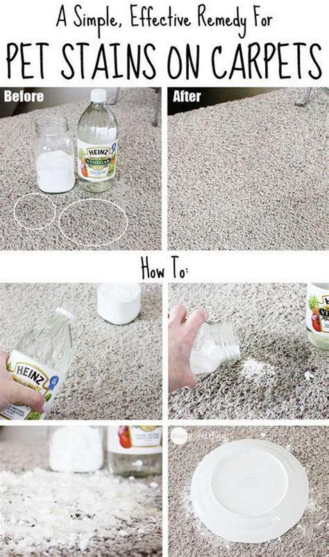 how to clean rug stains carpet cleaning solutions and tips noted list