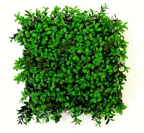 Christmas Outdoor Topiary Trees - artificial buxus hedge panels at evergreen direct