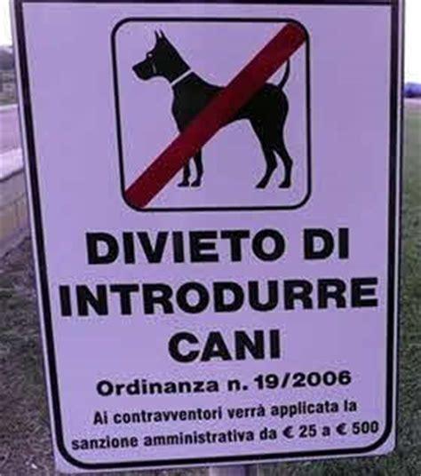 divieto ingresso cani spiagge per cani al mare con il nostro