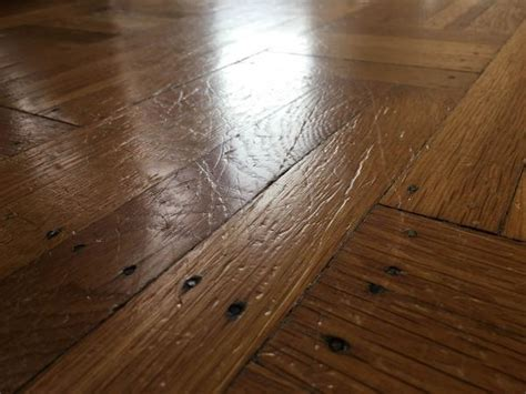 scratches from my big dog on hardwood floor what should i do doityourself com community forums