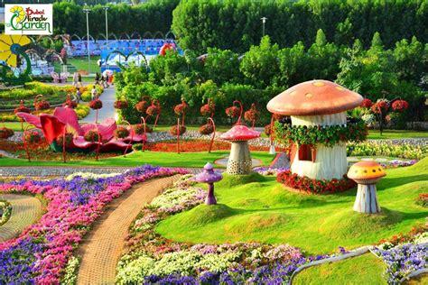 dubai flower garden miracle garden dubai world flowers