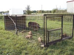 Goat Barn For Sale Portable Pig Tractor Our 5 Acre Farm Pinterest