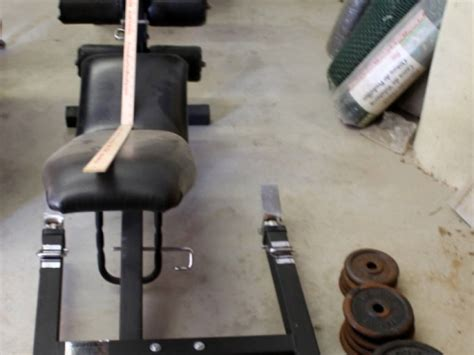 excel weight bench brutus excel weight bench