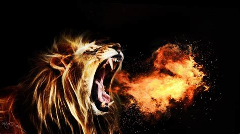 wallpaper free hd lion hd wallpapers collection for free download