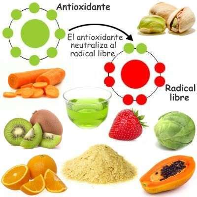 imagenes de radicales libres y antioxidantes 191 qu 233 importancia tiene los alimentos antioxidantes en