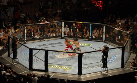 list of chinese martial arts wikipedia the free encyclopedia list of ufc events wikipedia