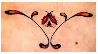 ladybugs in my bathroom wanna in el paso