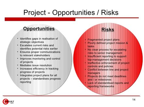 risk and opportunity management plan template risk management framework