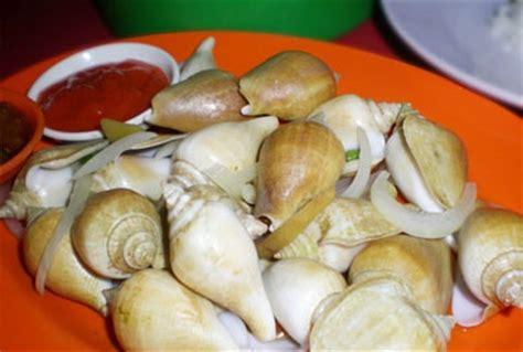 Kerang Gonggong siput gonggong gonggong snail batam batam