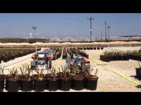 color spot nursery robots moving plants at color spot nursery in san antonio