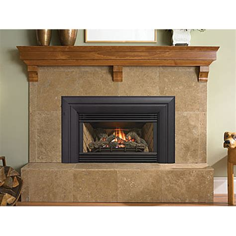 Gas Powered Fireplace by Regency Gas Fireplace Insert E21 28 Images Regency Gas