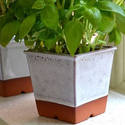 herb pots for windowsill windowsill herb pot oyster weston mill pottery uk