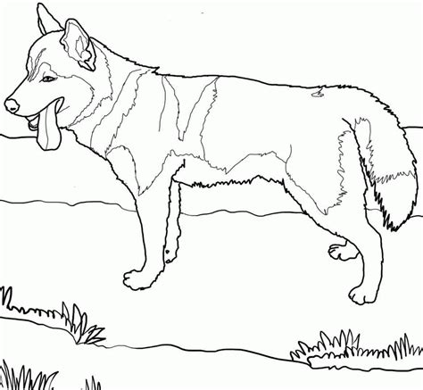 coloring pages of dogs coloring pages for az coloring pages