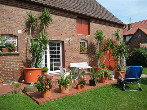 yucca palme schlafzimmer palme wohnzimmer 220 berwintern gt jevelry gt gt inspiration