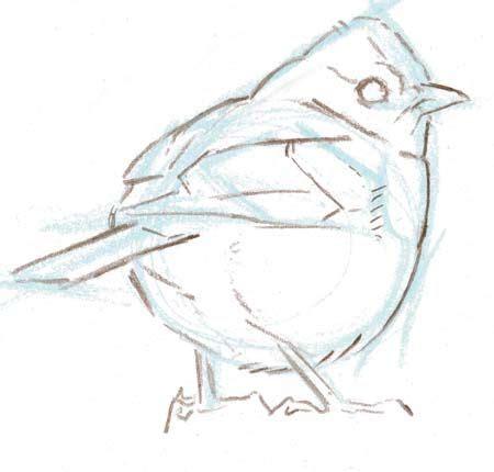 sketchbook zeichnen lernen 1000 idee 235 n vogel tekeningen op