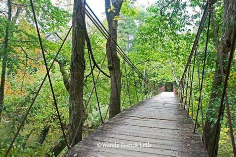 swinging bridge park 341 best images about home sweet home ms on pinterest