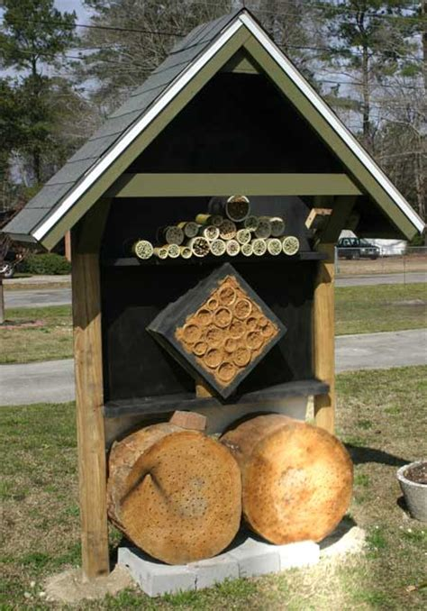 carpenter bee house carpenter bee house plans house plans