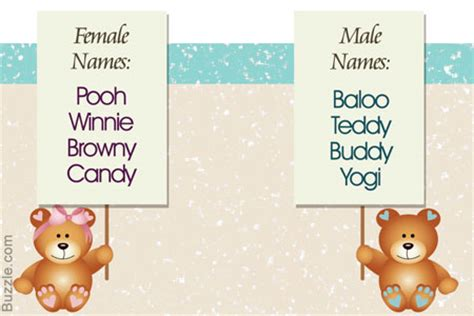 adorable teddy bear names that are alluring and spot on