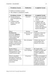 Circulatory System Essay by Cell Biology Vascular System Essay Report52 Web Fc2