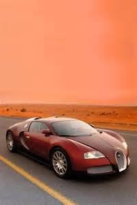 Mobil Bugatti Veyron 302 Found