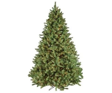 28 best litehouse pools christmas trees litehouse