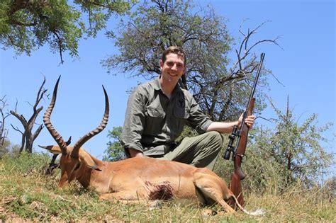 impala deer animal of the week impala