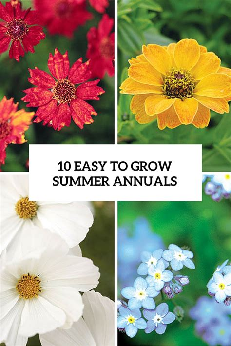 10 Tips On Growing Great Plants This Summer by Gardenoholic Outdoor And Indoor Garden 101