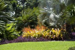 tropical landscaping clippix etc educational photos for