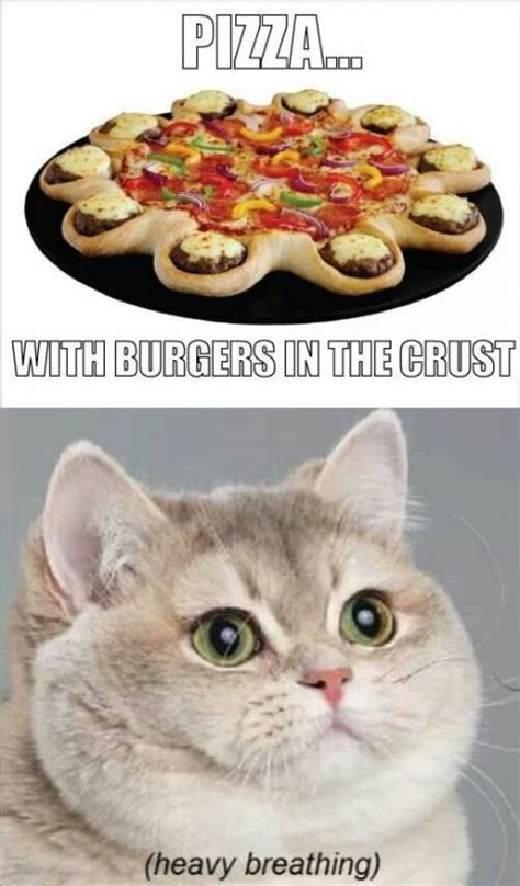 Breathing Heavily Cat Meme - i will find you and i will eat you