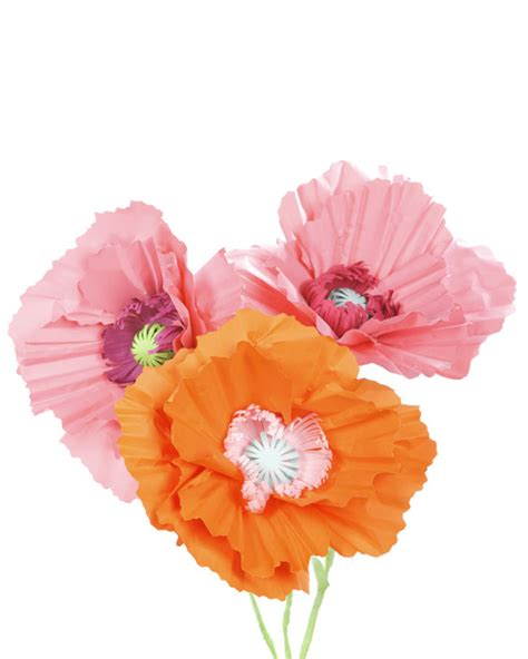 How To Make Paper Poppy Flowers - diy paper poppies two pink canaries