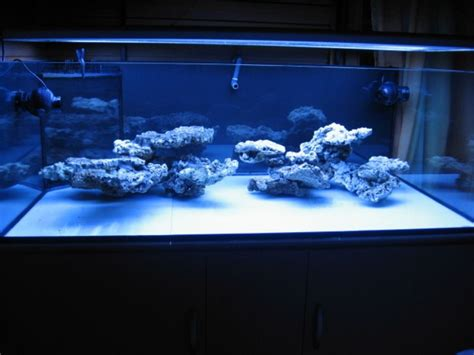 Marine Aquascaping Techniques by Reef Aquascaping Buscar Con Saltwater