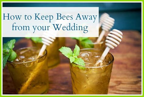 how to keep bees away from your wedding apple brides